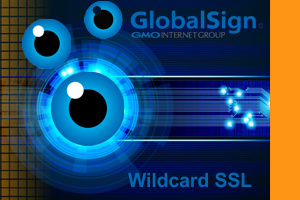 GlobalSign wildcards SSL