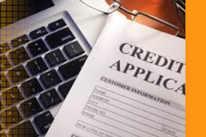 pbVerify Commercial Credit check API - South Africa